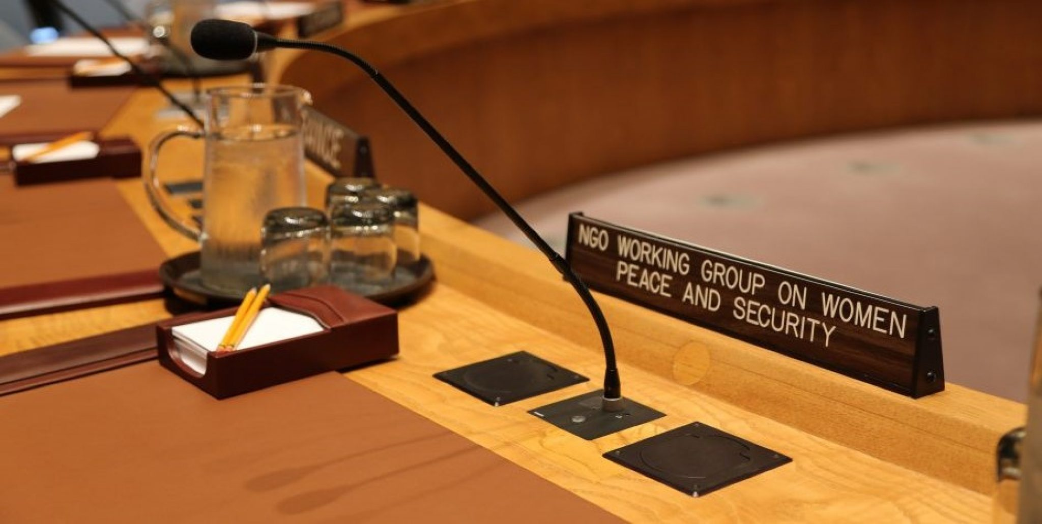 Why Women's Rights Must be Central to the UN Security Council's Response to COVID-19