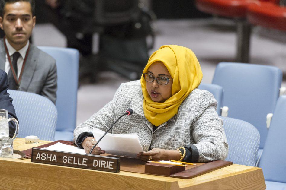 UN Security Council Briefing on Somalia by Asha Gelle Dirie