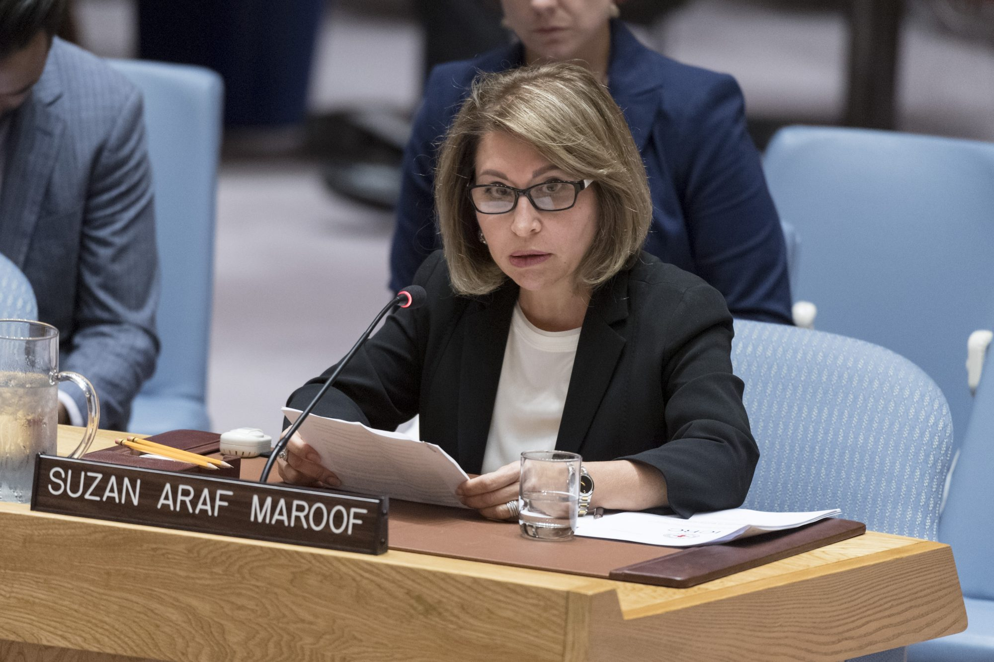 UN Security Council Briefing on Iraq by Suzan Aref