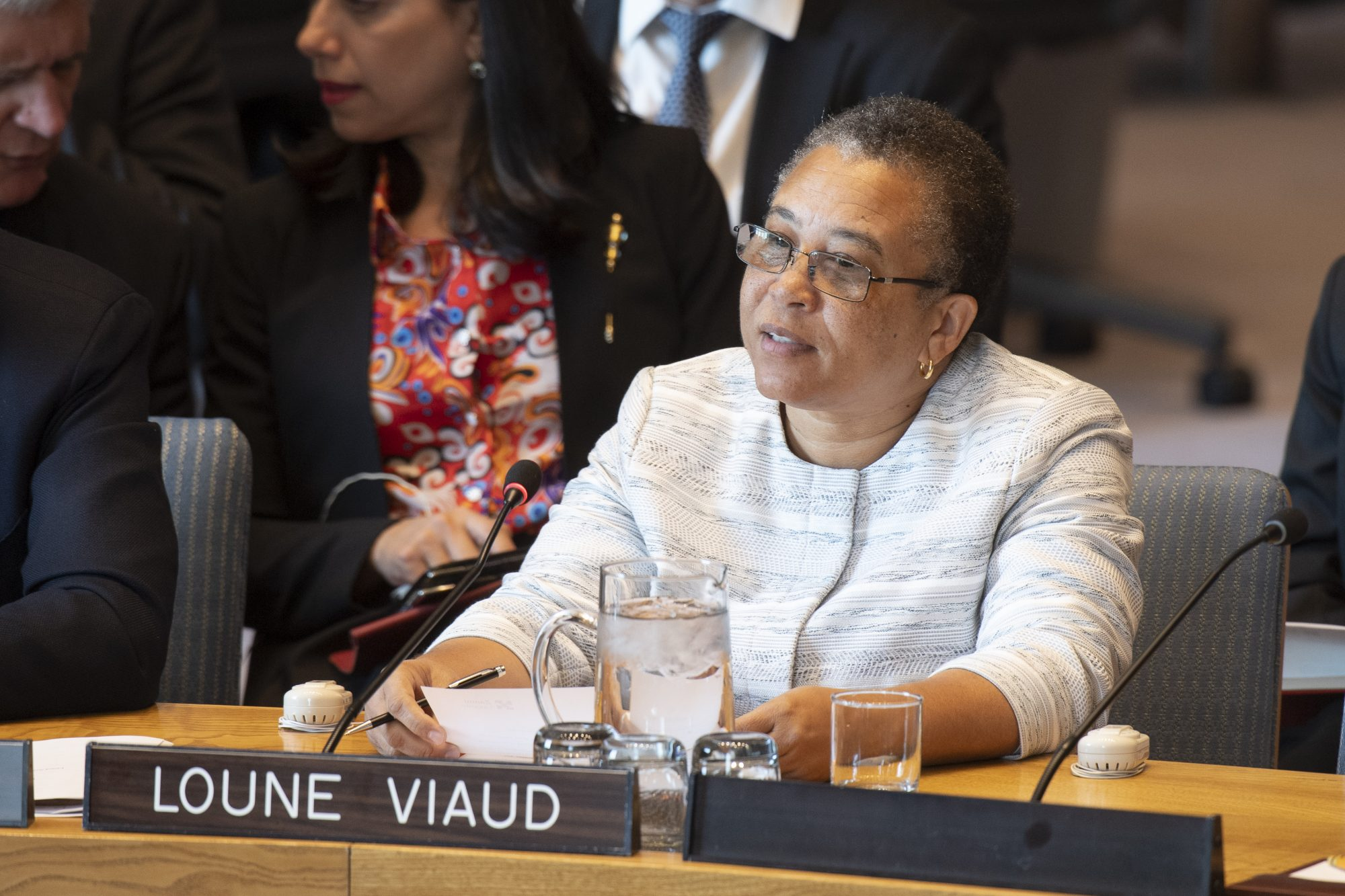 UN Security Council Briefing on Haiti by Loune Viaud